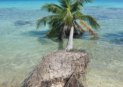 Montées des eaux en Polynésie Française