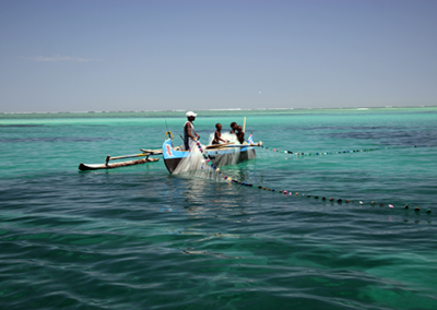 Pêche pélagique, Madagascar